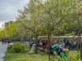fruehlingsfest-spekte-2017-DSCF8930