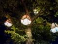 westerwaldplat-es-leuchtet-DSCF5683