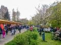 fruehlingsfest-spekteweg-2016-DSC_0564