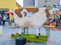 stadtteilfest-2017-DSCF9944
