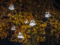 westerwaldplatz-illuminiert-2016-DSCF0498