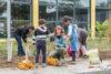 Tausende Blumenzwiebeln für den Westerwaldplatz